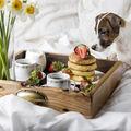 Au voie câinii să mănânce căpșuni?