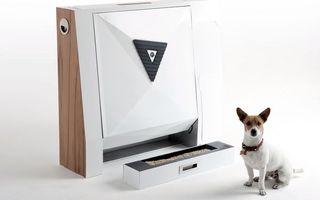 Singuri acasă: Toaleta de interior pentru câini