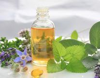 Cum poate îmbunătăți digestia și ameliora stresul uleiul de mentă