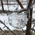 Vortexul Polar și merele de gheață: Efectul bizar al fenomenului care se produce o dată la o generație