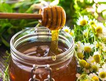 Mușețel și miere: 8 beneficii pentru sănătate