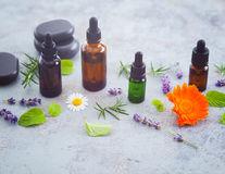 Uleiul cu mentă și rozmarin stimulează creșterea părului. Cum să-l prepari