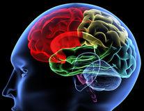 Memoria pacienților cu demență ar putea fi restaurată