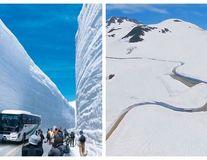 """""""Zidul de zăpadă"""": Cum fac japonezii turism cu drumul care taie nămeții"""