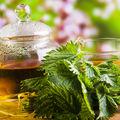 5 beneficii ale ceaiului de urzici pentru un păr bogat și o piele fără imperfecțiuni