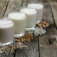 Laptele fara lactoza iți afecteaza negativ creierul?