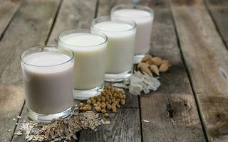 Laptele fără lactoză îți afectează negativ creierul?