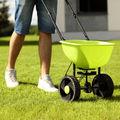 Cum să plantezi semințele de iarbă pentru gazon