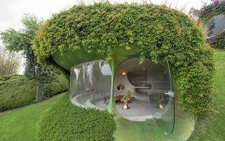 Cum arată o casă organică: Este perfect integrată în natură și pare o locuință pentru hobiți