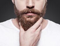 Bărbații cu barbă au mai mulți germeni decât câinii, potrivit unui studiu