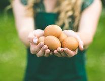 Cum îți dai seama dacă un ou este proaspăt sau vechi