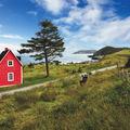20 de case ascunse în inima naturii, numai bune să stai departe de lume