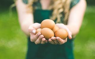 Cum îți dai seama dacă un ou este bun fără să îl spargi