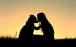 Cum depășești durerea când ți-ai pierdut câinele