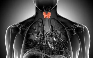 Cum să recunoști problemele glandei tiroide. Principalele simptome ale disfuncțiilor tiroidiene