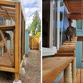 Terase construite pentru pisici, o nouă modă printre iubitorii de animale. 25 de imagini