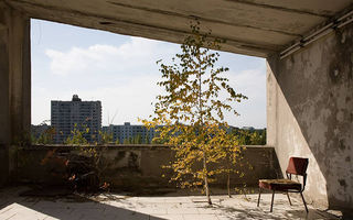 Natura preia puterea la Cernobîl: 50 de imagini din locul pe care oamenii l-au părăsit