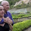Paradisul regăsit: Un fotograf și soția lui au plantat două milioane de copaci în 20 de ani și au refăcut o pădure în care animalele s-au întors