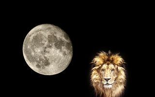 Luna Nouă în zodia Leu. Cum te afectează în următoarele săptămâni
