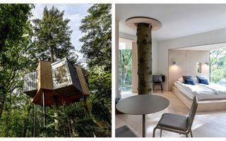 Hotelul din copac, refugiul perfect pe care un arhitect l-a creat într-o pădure din Danemarca