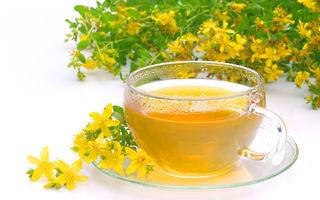 4 plante care combat stresul eficient