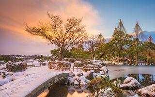 3 grădini impresionante din Japonia pe care trebuie să le vezi