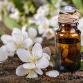 Uleiul esențial de iasomie: 9 beneficii parfumate pentru piele și starea de spirit