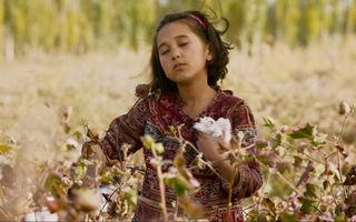 Festivalul Internațional de film KINOdiseea ediția XI aduce la București cele mai premiate filme ale anului, pentru publicul tânăr și o retrospectivă Marvel