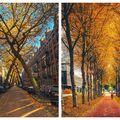 Toamna la Amsterdam: 10 imagini pline de culoare