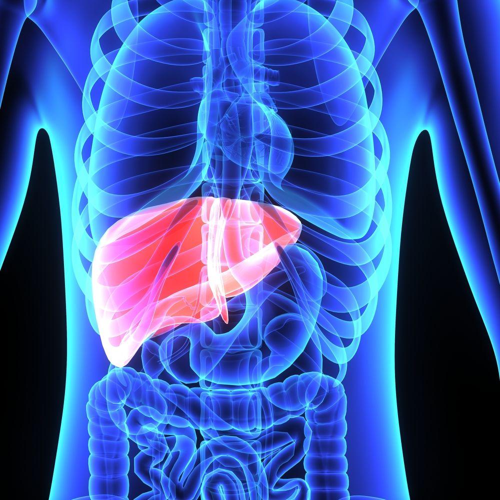 toxinele din ficat rinichi si vezica