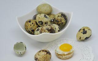 Cum îți afectează ficatul ouăle de prepeliță și ce beneficii au rețetele care le includ