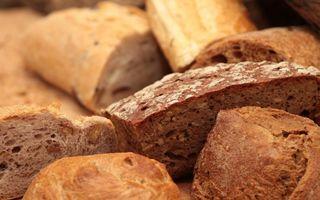 Care este cea mai sănătoasă pâine? Câtă să consumăm zilnic și care este cea mai potrivită pentru noi