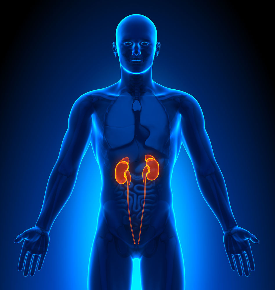 7 alimente care iti pot imbolnavi rinichii