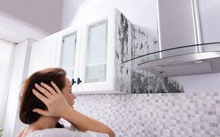 5 soluții naturale antimucegai