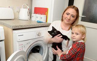 Pisica salvată după ce a rămas 20 de minute în mașina de spălat pornită. Stăpâna ei i-a făcut manevre de resuscitare
