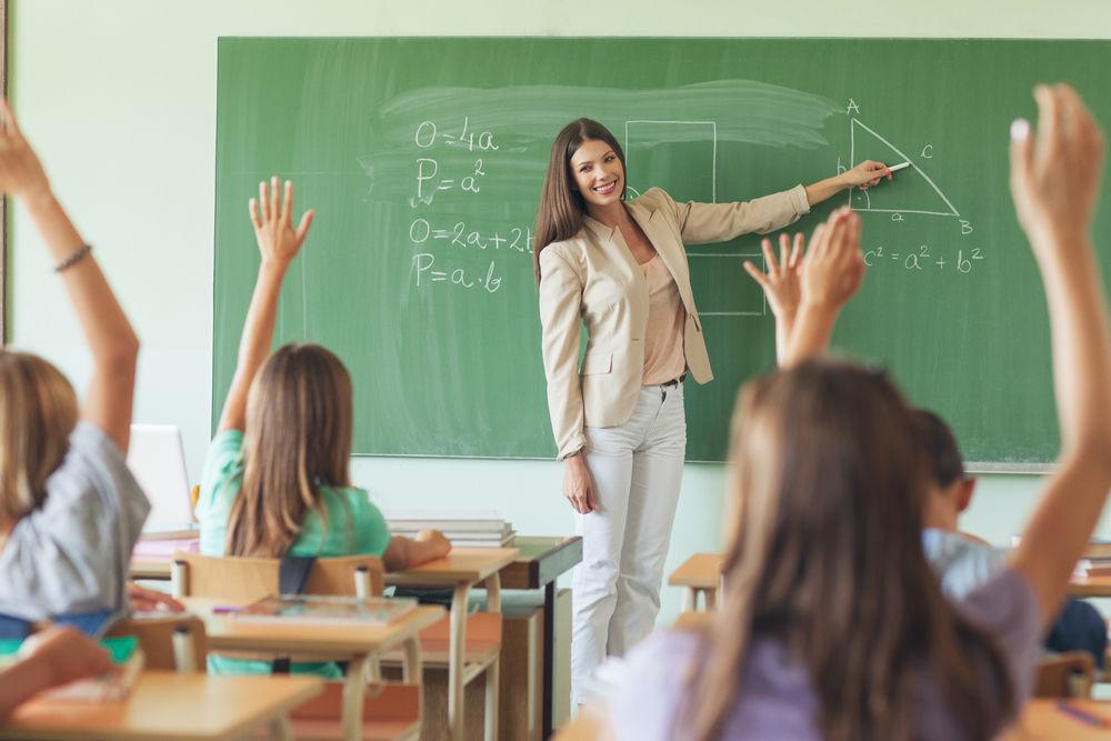 Cat castiga un profesor