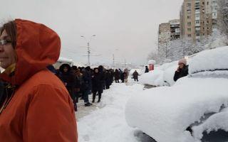 Zăpada a paralizat Bucureștiul! Zeci de copaci s-au prăbușit pe mașini - Ce se întâmplă acum în Capitală după ce a nins toată noaptea