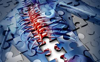 Cele mai frecvente boli ale oaselor și articulațiilor