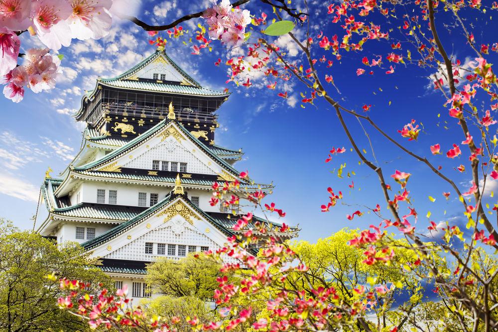 Excursie Japonia costuri