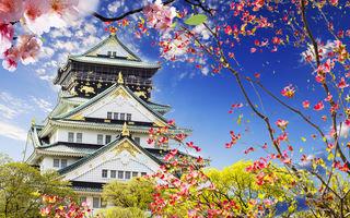 Cât costă o excursie în Japonia?