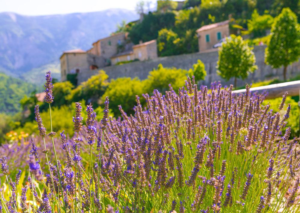 Cele mai frumoase sate din Franta