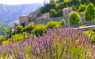 Lavandă, peisaje muntoase și regiuni viticole de basm: cele mai frumoase sate din Franța