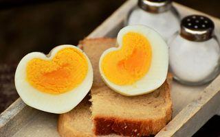 Ouă toxice: cum îți dai seama când devin ouăle toxice