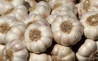 Usturoi toxic: cum deosebești usturoiul bun de cel toxic