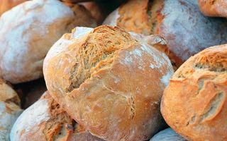 Pâine toxică: ce tip de pâine este toxică