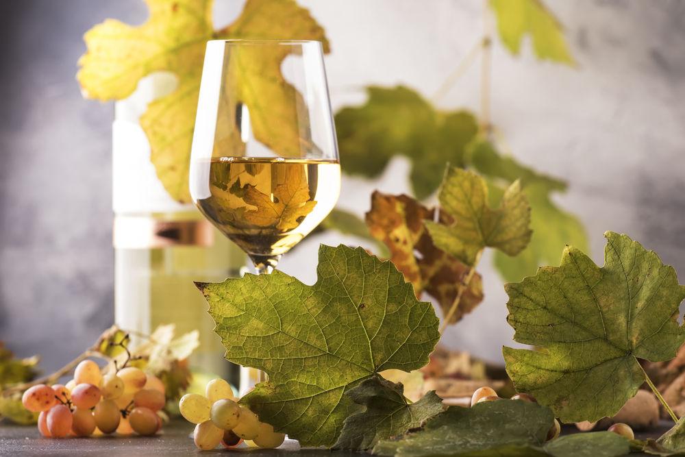 Preparate vin Pinot Grigio