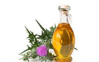 Ce beneficii vei obține folosind ulei din semințe de armurariu?