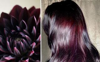 Culori de păr inspirate de natură. Creațiile uimitoare ale unei hairstiliste