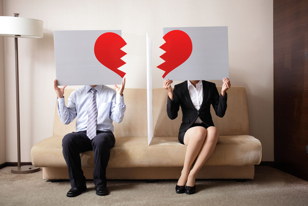 Vis divort