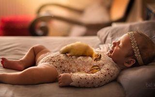 15 imagini cu bebeluși și animale: Există ceva mai frumos pe lume?